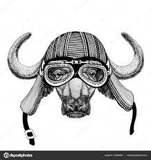 Buffalo Býk Vůl Ručně Nakreslený Obrázek Zvířat Nosit Přilbu Pro