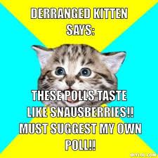 Memes Vault Happy Kitten Memes via Relatably.com