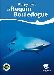 sharks mission sauver les requins partenariats avec les centres de plongeacutee