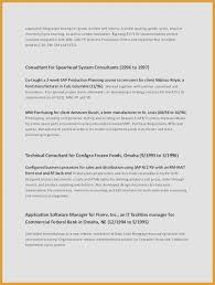 Examples Of Resume Format Fascinating Executive R Executive Resume Awesome Management Resume Examples