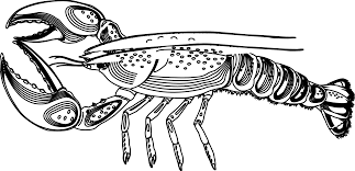 Small Picture Lobster Coloring Page And Pages For glumme