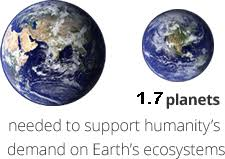 ecological footprint essay now i have for mobility of shelter and of goods the human transit reducing ecological footprint