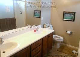 Inspiration For A Bathroom Makeover A Moms - Bathroom makeover