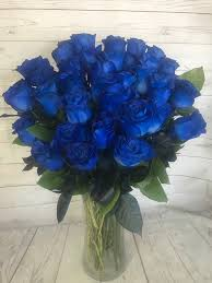 studio city blue roses in valley