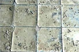 vinyl asbestos tile removal asbestos floor tile covering asbestos floor tiles with sealing glue encapsulating vinyl vinyl asbestos tile