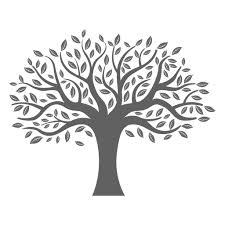 Flat Tree Silhouette Transparent Png Svg Vector