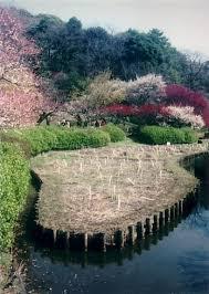 「1875年 - 小石川植物園地図」の画像検索結果