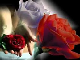 Resultado de imagem para maos cheias de flores