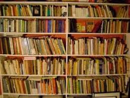 a few years ago i put up eight foot long by eight foot high bookshelves exclusively devoted to holding the sprawling collection of cartoon books my wife