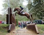 Images & Illustrations of cross-country jumping