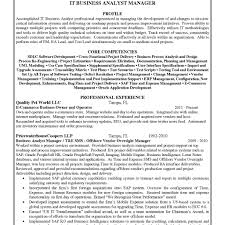 Business Analyst Resumes Resume Template