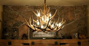 office chandelier lighting. Antler Chandelier For Home And Office Designs Lighting