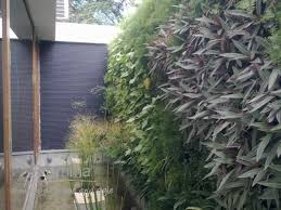 Small Picture Home Gardening India Benefits of a Vertical Garden Interior