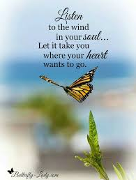 Listen To The Wind In Your Soul Vanessa Butterfly Butterfly