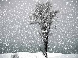 Snow Animated Shiv Pandit Animation Snow Falling Day 1 Youtube