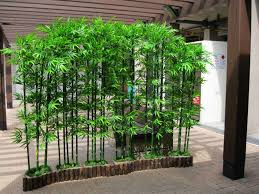 Small Picture Bamboo Garden Interior Best 25 Bamboo Garden Menu Ideas On