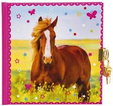 Goldbuch Tagebuch Pferdeliebe 165 X 165 Cm 96 Seiten