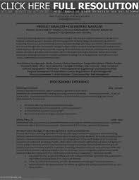 Director Of Software Engineering Resume Resume Template