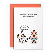 Congratulations On Your New Baby Card New Baby Card Dog Funny Rude Humorous Congrats Youve Had