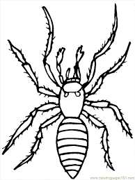 Small Picture Halloween Spider Coloring Pages Coloring Home spider picture to