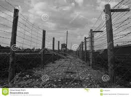 barbed wire fence concentration camp. Download Barb-wire Fence In Majdanek Concentration Camp Editorial Stock Image - Of Outdoors Barbed Wire