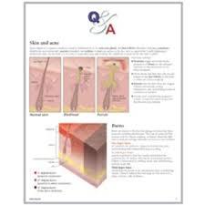 Q A Understanding Skin Flip Chart