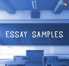 the importance of culture essay sle
