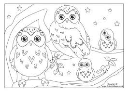Small Picture Owl Colouring Page 3