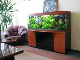 fish for office. Decorations:Striking Modern Home Office Aquarium Decoration Ideas With Leather Sofa Armchair And Wooden Cabinet Fish For