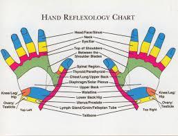 Hand Reflexology Chart Left Hand Veracious Reflexology Points Hand Reflexology Chart Laminated