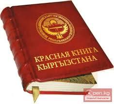Красная книга Кыргызской Республики Информационный портал о  Красная книга Кыргызской Республики