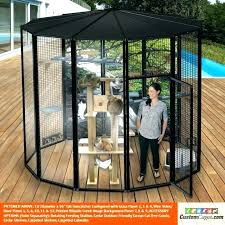 inexpensive cat enclosures how to build a enclosure patio outdoor an sydney inexpensive cat