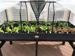 deck vegetable garden planters