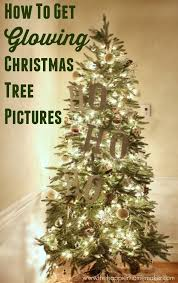 How To Get Glowing Christmas Tree Photos Christmas Cards