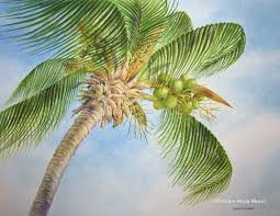 palm tree watercolor framed 20 x 24 by yvonne pecor mucci
