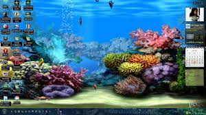 49+] Aquarium Live Wallpaper Windows 10 ...