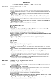Senior Audit Resume Samples Velvet Jobs