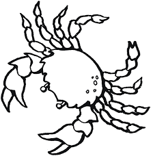 Small Picture Sea Animal Coloring Pages Free Printable Kids Ocean Animals