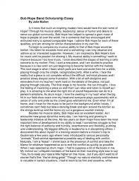 essay  computers essay