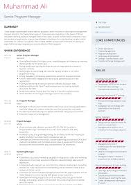 Senior Program Manager Resume Samples Templates Visualcv