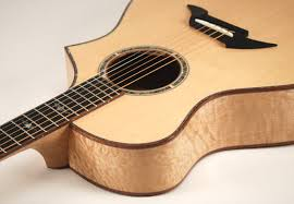 All Products : Imagine Guitars Shopping Cart & Breedlove Master Class C12 in Pillow Maple Adamdwight.com