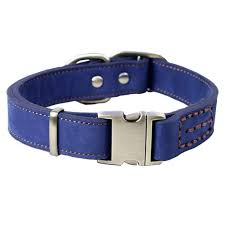 leather dog collar with quick release buckle blue