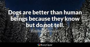Dog Death Quotes 18 Wonderful Emily Dickinson Quotes BrainyQuote