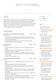 Product Consultant Resumes Self Employed Resume Samples And Templates Visualcv