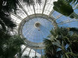 palm trees tumblr vertical. Vertical Access Was Retained By Robert Silman Associates To Investigate Existing Conditions Of The Upper Dome And Cupola At Enid A. Haupt Conservatory Palm Trees Tumblr D