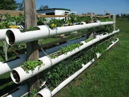 how to build a hydroponic garden. diy hydroponic garden tower using pvc pipes how to build a