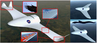 New Airplane Wing Design New Plane Wing Moves Like A Birds And Could Radically