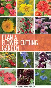 a cutting flower garden plan