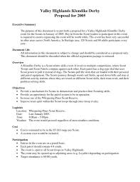 Writing Executive Summary Template Executive Summary Proposal Template Writing Executive Summary