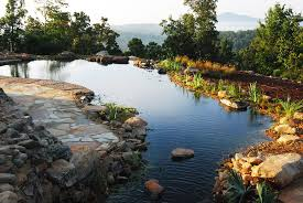 ... Large-size of Hilarious Blog Swimming Design Construction Total in Natural  Swimming Pools ...